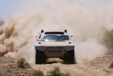 Nemtii castiga la Dakar!4617