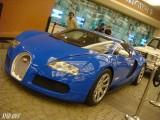 Lucrurile scumpe si rare se gasesc la Dubai!4491