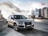 Audi nu se mai da cu ecologistii3816