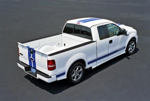 Ford anunta ca supravietuieste2472