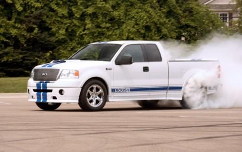 Ford anunta ca supravietuieste2474
