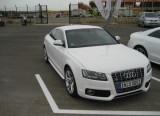 Audi S5 Evo - O ocazie inedita!1468