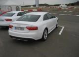 Audi S5 Evo - O ocazie inedita!1469