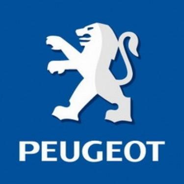 Peugeot-Citroen a anuntat cresterea veniturilor cu 2,3 procente978
