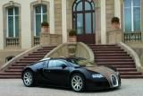 Bugatti Veyron Hermes - Ispita irezistibila!855