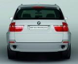"""BMW X5 - """"Verdele"""" de sub capota!804"""