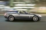 Jaguar - Miza se mareste!732