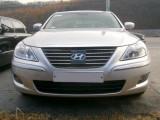 Hyundai Genesis - Invazia e pe cale sa inceapa402