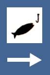 Zona de pescuit