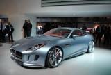 Standul Jaguar