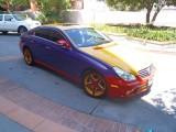 Mercedes tricolor