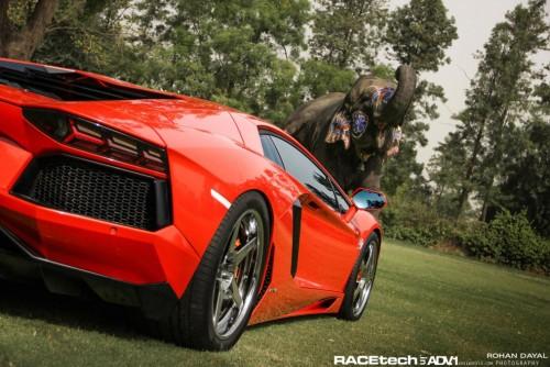 Lamborghini Aventador si un elefant