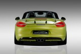 Porsche Boxter 981 SpeedART