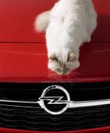 Noul Opel Corsa şi Choupette pozează pentru Karl Lagerfeld