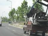Tarani fara frontiere (40): T-Transport Company43747