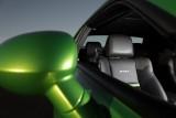 Dodge Challenger se inverzeste de invidie41014