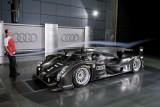 Audi, ce ochi mari ai!37745