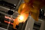Galerie Foto: Lansarea lui Dacia Sandero Orange34687