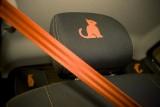 Galerie Foto: Lansarea lui Dacia Sandero Orange34702