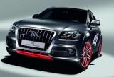 Audi nu va produce versiuni RS pentru Q5 si Q734551