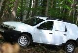 Versiunea van a lui Dacia Duster30158
