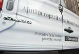 Mercedes Sprinter si Copacul de Hartie au ajutat la plantarea a 5.000 de copaci29819