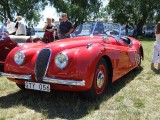 Jaguar 1920 – 194029615