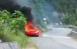 VIDEO: Inca un Ferrari 458 Italia a luat foc29218