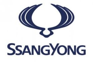 Renault ar putea cumpara compania Ssangyong