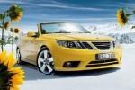 Curtea de apel suedeza permite Saab sa faca recurs