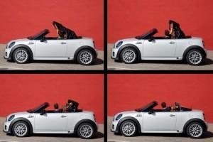 Spontan, deschis, irezistibil: MINI Roadster