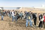 RTR planteaza 87.000 de copaci la Centrul Tehnic Titu