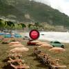 VIDEO: Fiat lanseaza o noua reclama amuzanta - Cum emigreaza modelul 500 in America