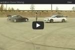 VIDEO: Cerculete, cerculete, insa nu loviti femeia!