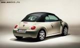 Volkswagen Beetle Cabrio, Numar usi