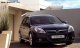 Opel Signum, Numar usi