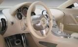 Bugatti Veyron 16.4 Coupe, Numar usi